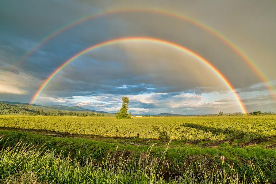 regenbogen 900x600